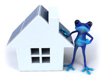Blue frog. Cute little frog , 3D generated Royalty Free Stock Image