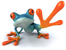Blue frog Stock Photos