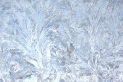 Blue Frost Royalty Free Stock Photography