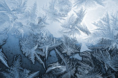 Blue frost pattern Stock Photos