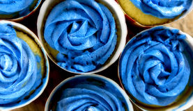 Blue Frosting Cupcakes Stock Images