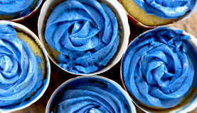 Blue Frosting Cupcakes Royalty Free Stock Images