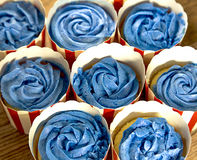Blue Frosting Cupcakes Royalty Free Stock Image