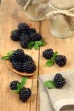 Blue fruit Stock Photos