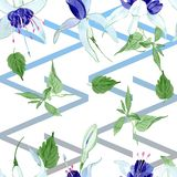 Blue fuchsia floral botanical flowers. Watercolor background illustration set. Seamless background pattern. royalty free illustration