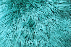Blue fur background Stock Images