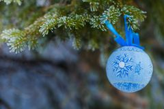 Blue fur-tree toy on a branch of blue fir-tree blue, green, white, Colorado blue spruce, Picea pungens covered with hoarfrost. New Stock Photography