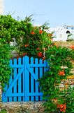 Blue garden gate. Painted blue garden gate surrounded by flowers and greenery with Mediterranean white washed buildings in background, Cyclades, Greece Royalty Free Stock Photo