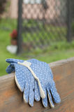 Blue garden gloves Stock Images