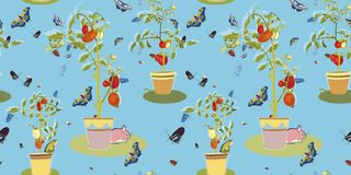 Blue garden pattern with tomato plant. stock illustration