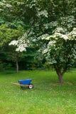 Blue garden wagon in garden of Barnes Museum Philadelphia, Pennsylvania Stock Image