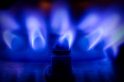 Blue gas flame. On a stove Stock Images