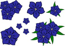 Blue gentian flowers. stock illustration