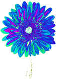 Blue gerbera, painting Stock Photography