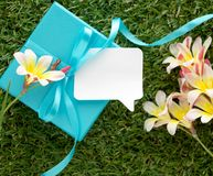 Blue gift box with a bow, blank note for text and flowers,. On green grass Stock Photography