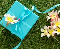 Blue gift box with a bow and flowers. Blue gift box with a bow and flowers, on green grass Royalty Free Stock Images