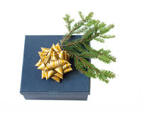 Blue gift box with gold bow and Christmas tree branch Royalty Free Stock Image