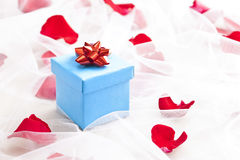 Blue Gift box with red bow on wedding veil. With rose petals Royalty Free Stock Photo