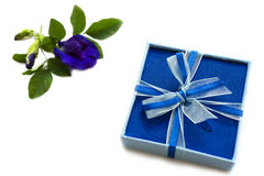 Blue gift box with two tone ribbon. Stock Image