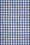 Blue gingham cloth Royalty Free Stock Images