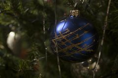 Blue glass christmas tree ornaments decoration. Blue glass ball hanging on green Christmas tree branch Royalty Free Stock Image