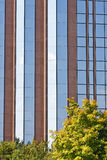 Blue Glass and Red Stone Behind Fall Foliage Stock Photos