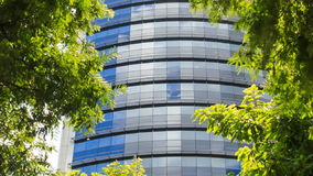 Blue Glass Skyscraper through Space among Tropical Plants. Panorama of blue glass skyscraper through spare space among green tropical plants stock video footage