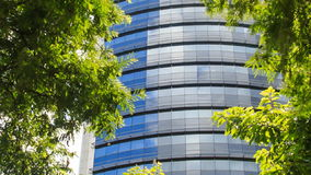 Blue Glass Skyscraper through Space among Tropical Plants. Panorama of blue glass skyscraper through spare space among green tropical plants stock video