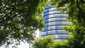 Blue Glass Skyscraper through Space among Tropical Plants. Panorama of blue glass skyscraper through spare space among green tropical plants stock footage