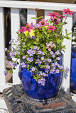 Blue Glazed Terracotta Planters Stock Photography