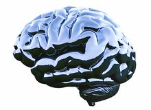 Blue glossy brain on white background. 3D illustration stock illustration