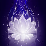 Blue glossy lotus on neon abstract background Stock Photo
