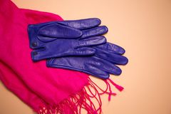 Blue gloves on a scarf. Blue gloves on a pink scarf on a beige background royalty free stock photos