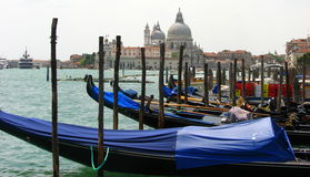 Blue Gondolas at Venice Italy Royalty Free Stock Images