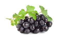 Blue grape Royalty Free Stock Image