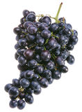 Blue grape royalty free stock images