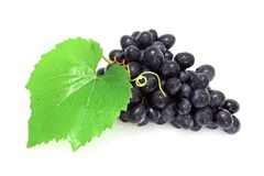 Blue grape cluster. Fresh blue grape cluster and green leaf Royalty Free Stock Photos