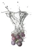Blue grape dropped into water with splash Stock Photography