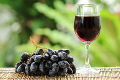 Blue grape fruit juice and Grape Fruit Stock Photography