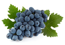Blue grape fruit with leaf Stock Images