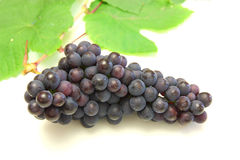 Blue grape with green leaf Stock Photography