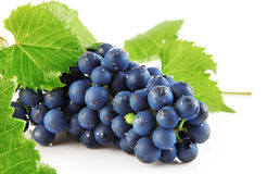 Blue grape with green leaves isolated fruit Royalty Free Stock Image