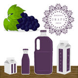 The blue grape. Vector illustration logo for whole ripe fruit blue grape green stem leaf cut sliced.Grape pattern consisting of tag label peel fruits pip ripe Stock Image