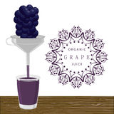 The blue grape. Vector illustration logo for whole ripe fruit blue grape green stem leaf cut sliced.Grape pattern consisting of tag label peel fruits pip ripe Royalty Free Stock Photo