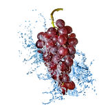 Blue grape with water splash isolated. On white Stock Photos