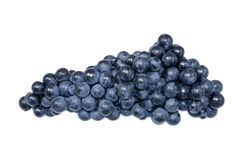 Blue grapes. Great blue bunch of grapes Royalty Free Stock Images