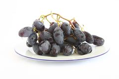Blue grapes Stock Image