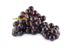 Blue grapes. Isolated on a white background Royalty Free Stock Image