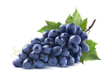 Blue grapes bunch with leaf isolated on white background Royalty Free Stock Photo