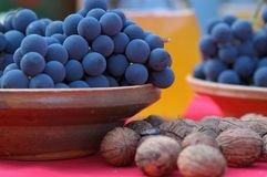 Blue grapes and chestnut Royalty Free Stock Image